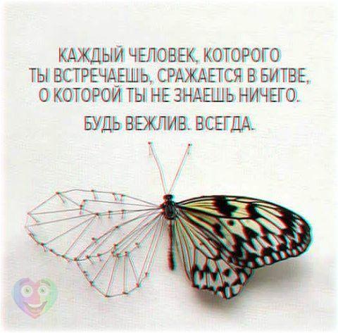 AOA_8koLYGw.jpg
